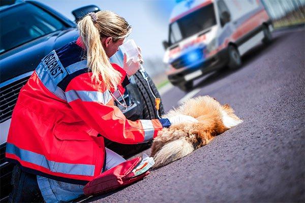 Notfall-Ambulanz